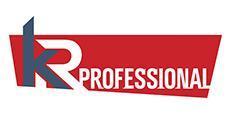 Искусственный камень KR-Professional